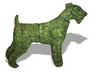 Airedale Topiary