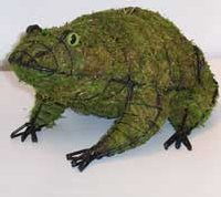 Frog Moss Topiary