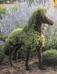 Horse Moss Topiary