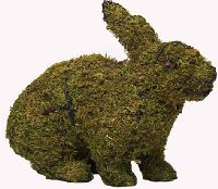 Rabbit Hopping Moss Topiary