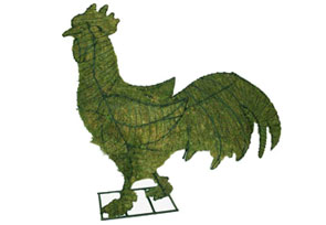 rooster Topiary