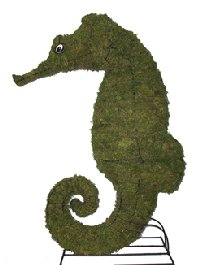 Seahorse Moss Topiary